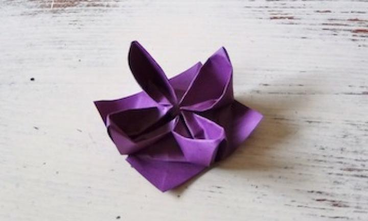 How To Make An Origami Waterlily Video