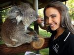 <p>Miss Universe Australia, Rachael Finch gives Birthday Girl the koala her daily medicine at the Port Macquarie Koala Hospital. Photo: Nathan Edwards</p>