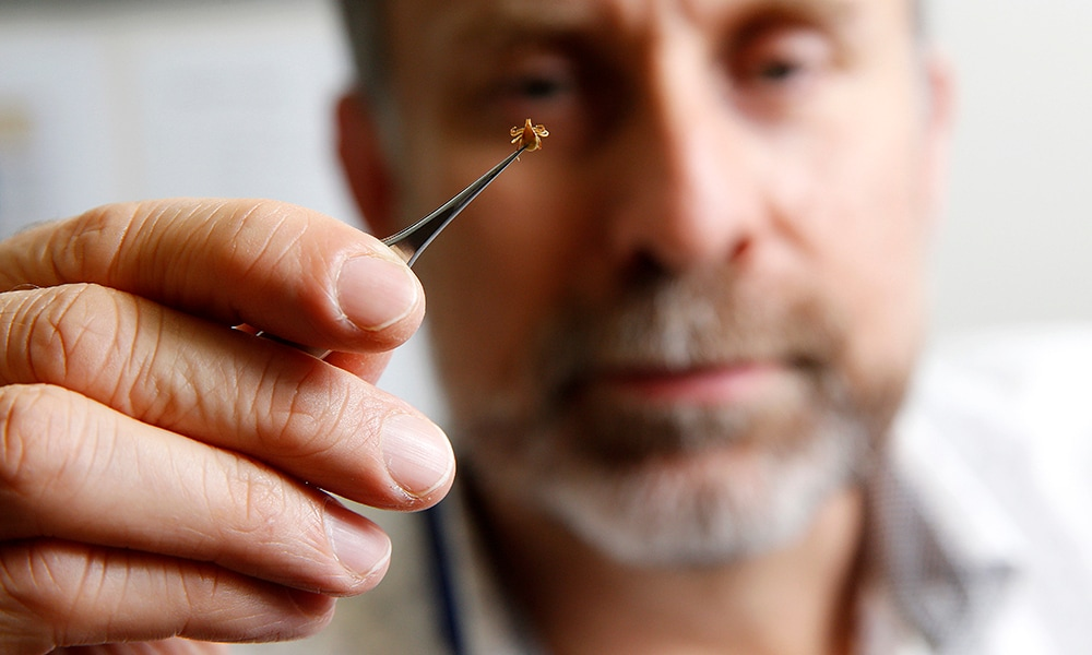 Tick expert Dr Stephen Doggett