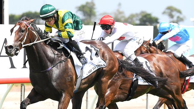 Magic Millions Cup winner Care To Think is set to target the Doncaster Mile in the autumn.