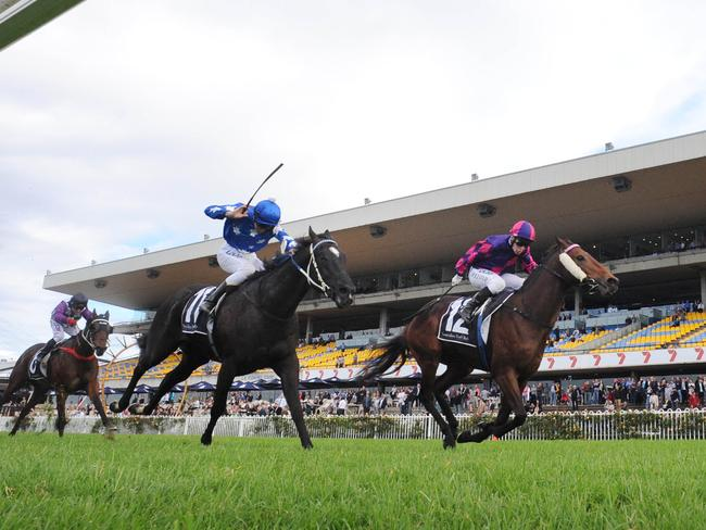 Dowdston Charlie, ridden by Jeff Lloyd, proves too strong on the line. Picture: Simon Bullard