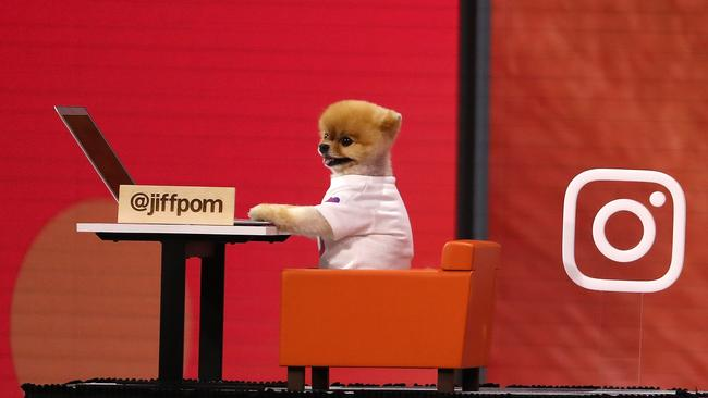 Instagram star user JiffPom appeared at the F8 Facebook Developers' Conference in San Jose. Picture: Justin Sullivan/Getty Images/AFP