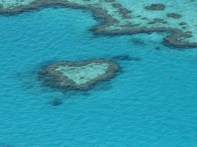 The Great Barrier Reef is at risk of rising sea temperatures.