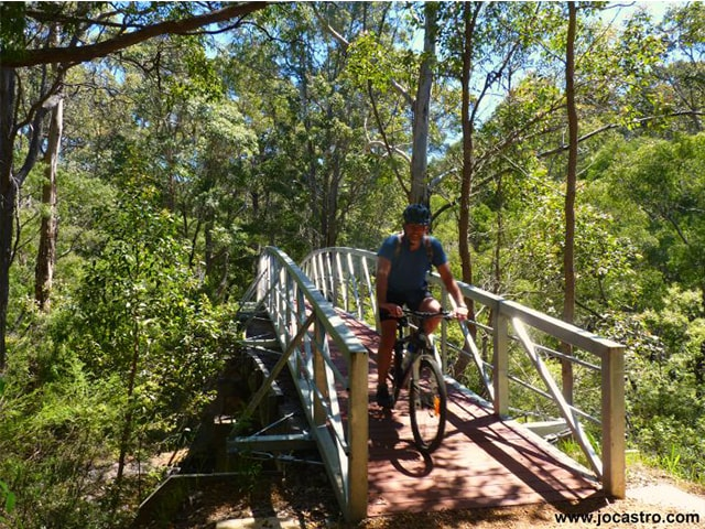 Jo-Castro-10_The-old-rail-trail-is-now-a-bike-and-walking-path.-Its-quite-flat-and-meanders-from-Margaret-River-to-Cowaramup-through-shady-forest.png