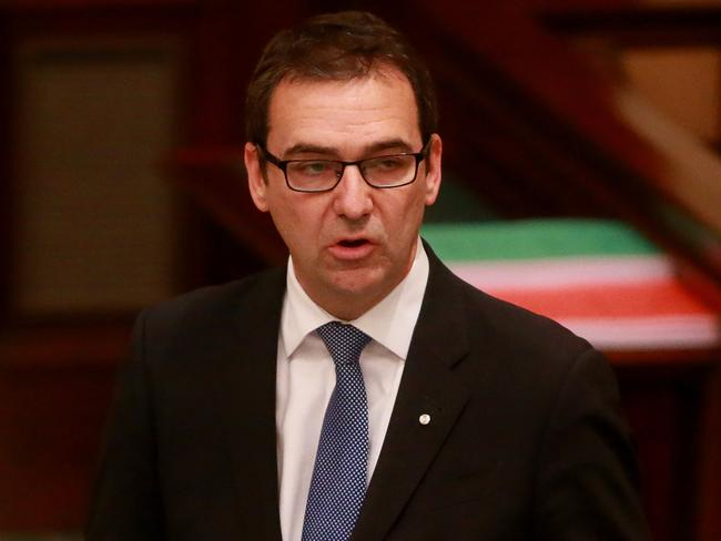 Canoe comments were 'deplorable' and 'disgraceful' ... South Australian Opposition Leader Steven Marshall.