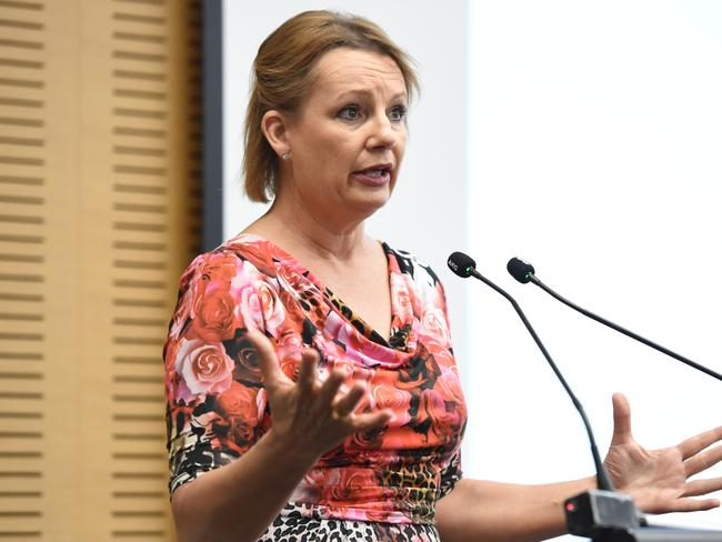 Health Minister Sussan Ley says junk policies should be 'called out'. But will she ban them? Picture: Lawrence Pinder