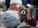 A fan with a dog decorated with US flags awaits the arrival of Britain's Prince Harry and his fiancee Meghan Markle as they arrive for a visit to Cardiff Castle in Cardiff, Wales, Thursday, Jan.18, 2018. Picture: AP
