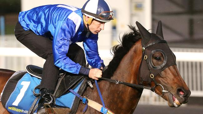 Winx will be chasing back-to-back Cox Plate wins on Saturday. Picture: Michael Klein