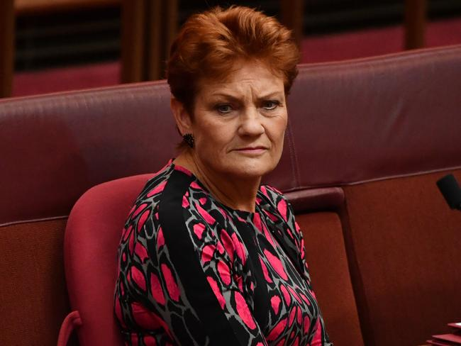 Pauline Hanson's One Nation has kept its hold on 10 per cent of voters. Picture: AAP Image/Mick Tsikas