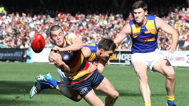 Crows young gun Brad Crouch refused to give in at Adelaide Oval. Picture: Sarah Reed