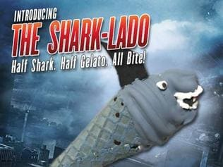 The Shark-Lado cone.