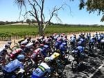 The peloton rolls past vineyards en route to Lyndoch. Picture: Dan Peled/AAP Image