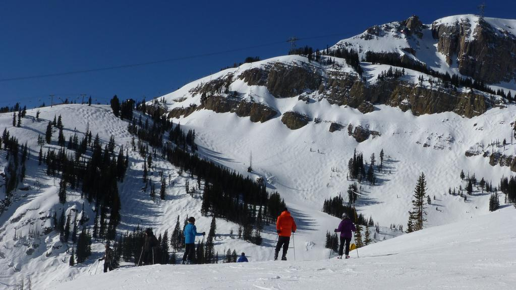 Skiing Wildlife And Dining At Jackson Hole In Wyoming