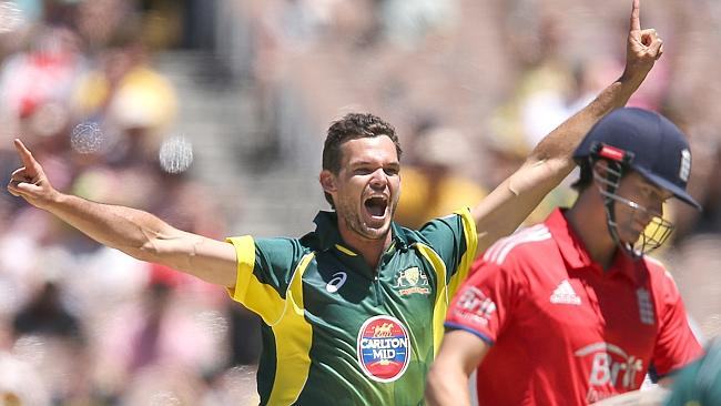 Clint McKay celebrates after dismissing England captain Alastair Cook. Picture: Wayne Ludbey.