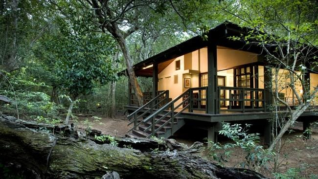 Phinda Forest Lodge in South Africa.