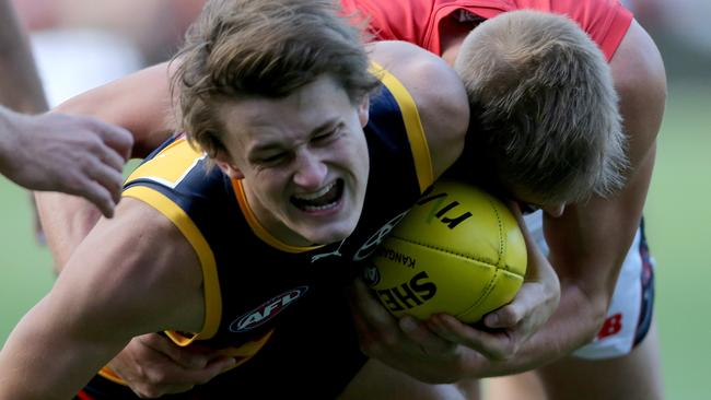 Matt Crouch could return to the senior team this week. Picture: Simon Cross