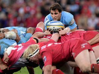 BRISBANE, AUSTRALIA - JULY 12: Nick Phipps of the Waratahs feeds the scrum during the round 19 Super Rugby match between the Reds and the Waratahs at Suncorp Stadium on July 12, 2014 in Brisbane, Australia. (Photo by Bradley Kanaris/Getty Images)
