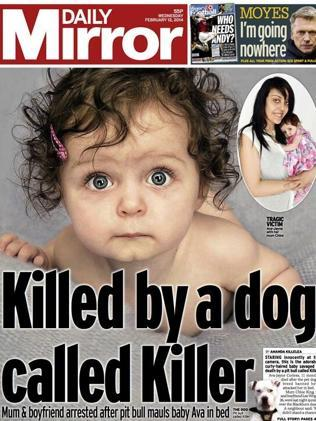 Banned dog mauls baby to death