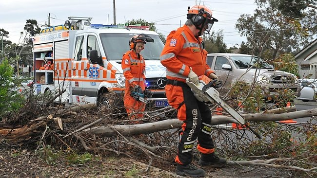 Chelsea SES crew clearing a fallen tree from the Nepean Highway near White Street at Parkdale. Picture: Chris Eastman