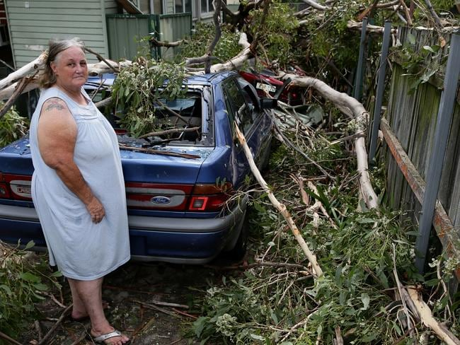 Judy Stott and her partner's cars were hit by falling trees at their home in Belmore Ave,