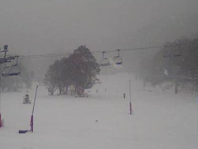 Told ya! This is the bottom of Thredbo, where 20cm has now fallen. Up top they got more than double that and it's still snowing like mad.