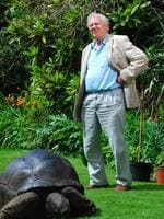 David Attenborough pictured in documentary 'Kingdom of Plants'. Supplied by ABC Pic. Supplied