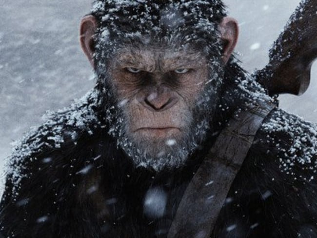 Andy Serkis as Caesar in the War for the Planet of the Apes.