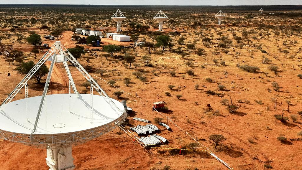One of the radio telescopes in WA's Mid-West which could form part of the Square Kilometre Array.