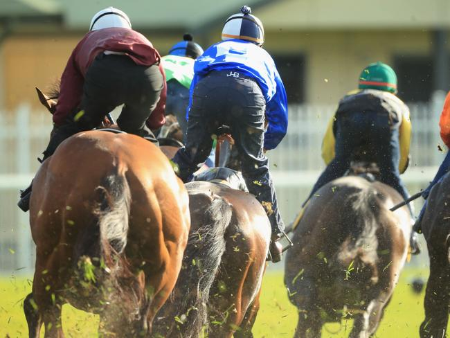 Hugh Bowman was very impressed with the relaxed nature of Winx (blue/white silks) this early in her preparation. Picture: Getty Images