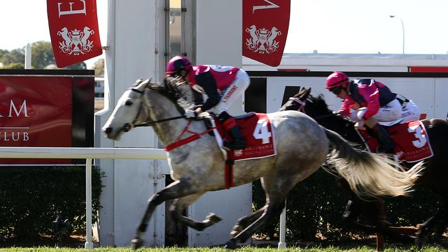 Jockey Luke Tarrant had plenty to do on the talented yet wayward Miss Stash in the opening race at Eagle Farm on Saturday. Picture: Jack Tran.