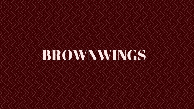 Captain Brown Wings reporting for duty