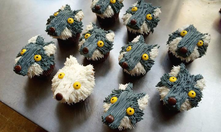 black-box-bakery-wolf-cupcakes