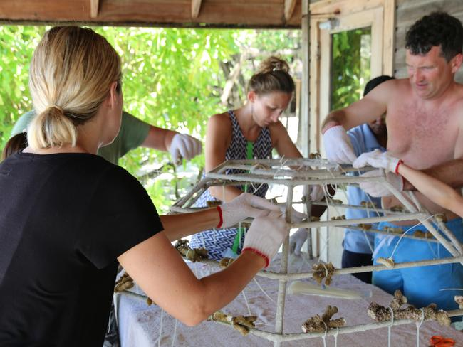Getting hands on during Earth Day activities at COMO Cocoa Island. Picture: Celeste Mitchell