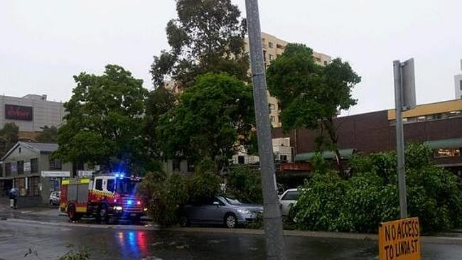 Trees have fallen on cars at Hornsby after a 'mini tornado' touched down this afternoon. Source: Supplied
