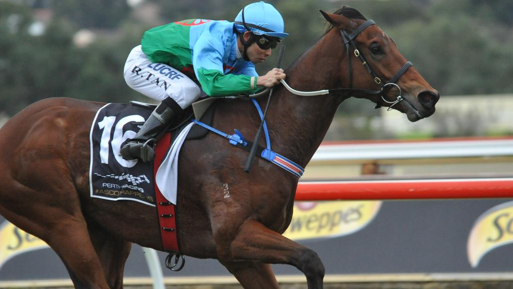 Scales Of Justice is attempting to make it back-to-back Group 1 wins in Saturday's Kingston Town Classic at Ascot.