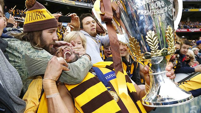 Josh Gibson enjoys Hawthorn's premiership with fans at the MCG. Picture: Michael Klein