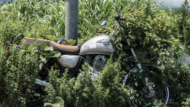 Since the disaster weeds have grown over items that were left behind. Picture: Arkadiusz Podniesinski/REX Shutterstock