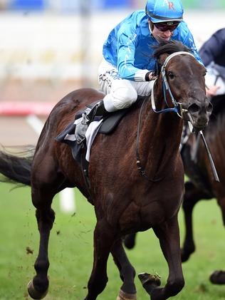 Fontein Ruby with jockey Mark Zahara. Picture: Jason Sammon