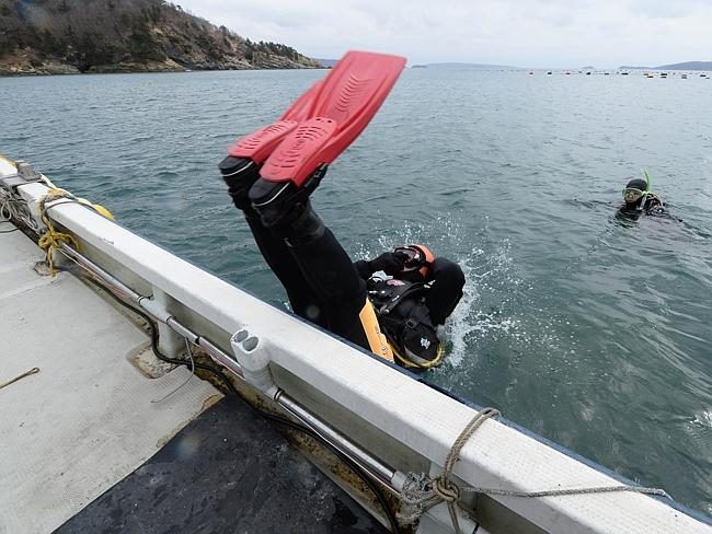 Into the vast ocean ... Yasuo Takamatsu jumps into the ice-cold water with a diving tank on. He says he has 'not moved on a bit' since losing his wife Yuko in the 2011 tsunami. Picture: Toru Yamanaka