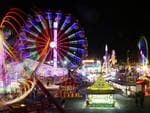 <h2>Ekka lights up</h2>The million-dollar spectacular after the sun goes down in the main arena. EkkaNTIES has entertainment for the whole family with lasers, water fountains and fireworks.