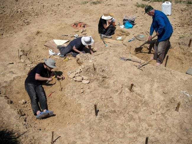 "Palaeontologists work near the site where a fossilised tooth with three roots was found in 2002. Picture: Nikolay Doychinov  <a capiid=""288eebbad4b50209db07c65a4401e5ec"" class=""capi-video"">The path of Human evolution could be rewritten</a>"