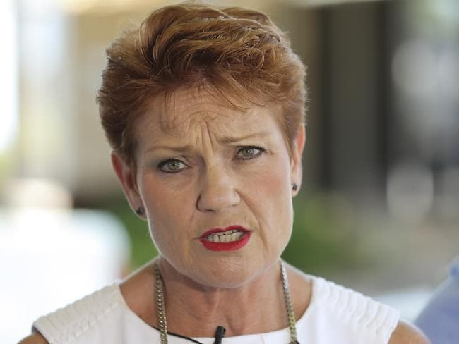 Pauline Hanson says members of African crime gangs should be deported. Picture: Mark Cranitch.