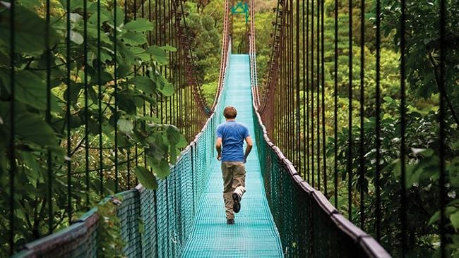 A cloud forest? Does travel get more amazing that that? Picture: Supplied
