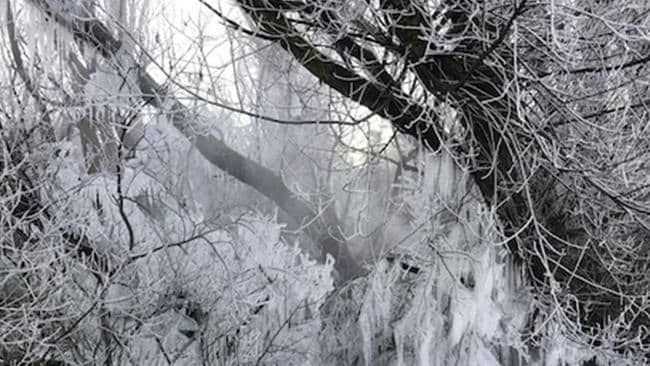 Ice formed in New Gisborne, at the foot of the Macedon Ranges in Victoria, on Saturday when a burst water pipe coincided with sub zero temperatures.