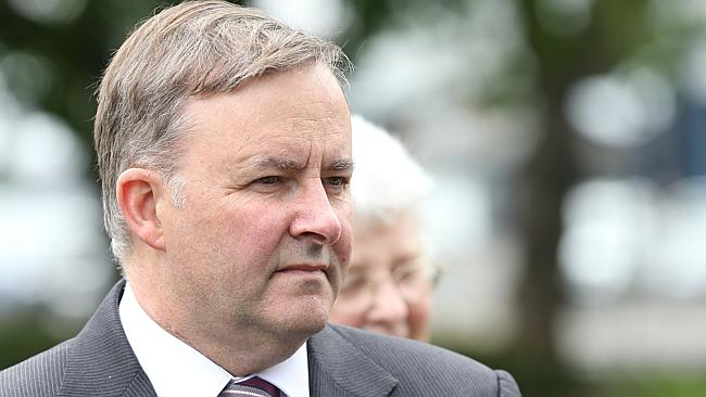 Anthony Albanese said the vote would be a 'turning point' for the party.