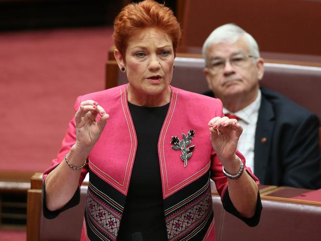 Senator Pauline Hanson speaking in the Senate on racism. Picture: Gary Ramage