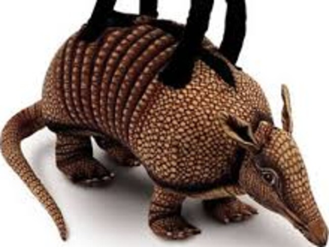 An armadillo bag ... this is the opposite of chic.
