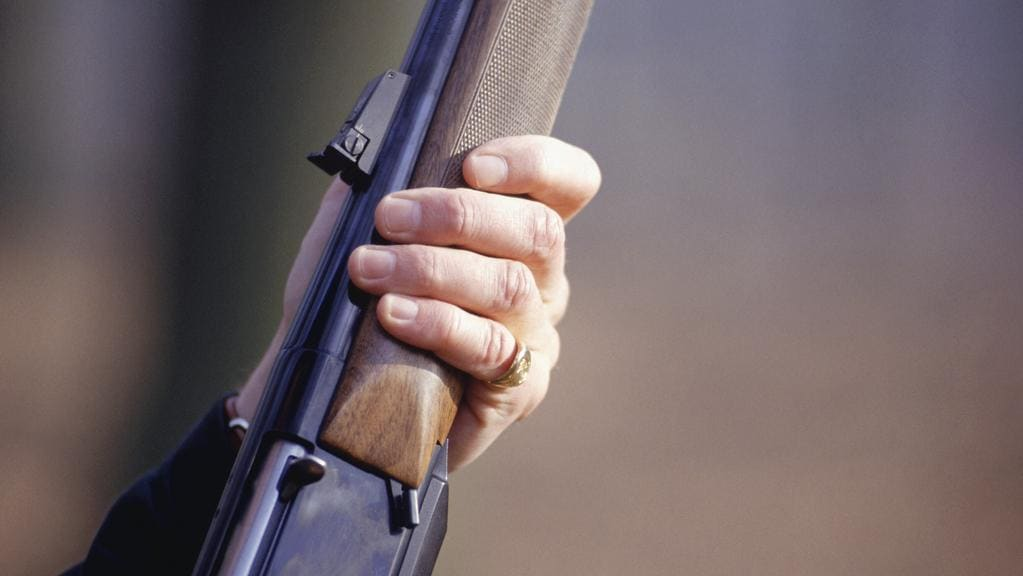 Victorians have handed in 751 firearms during the first months of National Firearms Amnesty. Picture: Stock image