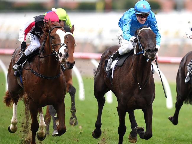Fontein Ruby (right), with jockey Mark Zahara aboard, knuckles down to the challenge. Picture: Jason Sammon