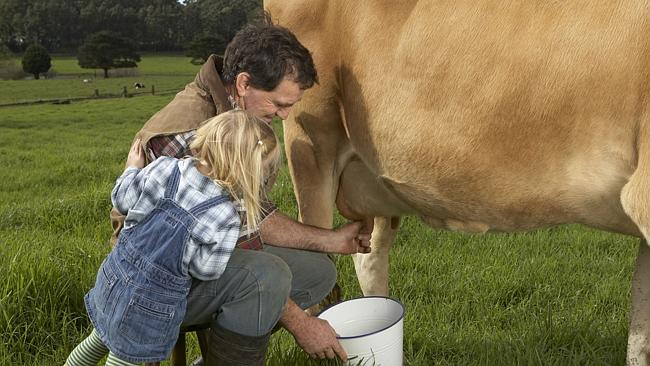No skim milk here. Picture: Thinkstock.